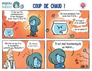 coup-de-chaud-768x592